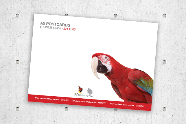 A5Postcards420Gloss