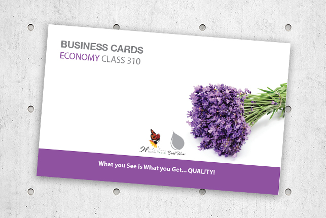 BusinessCardsEconomyClass310